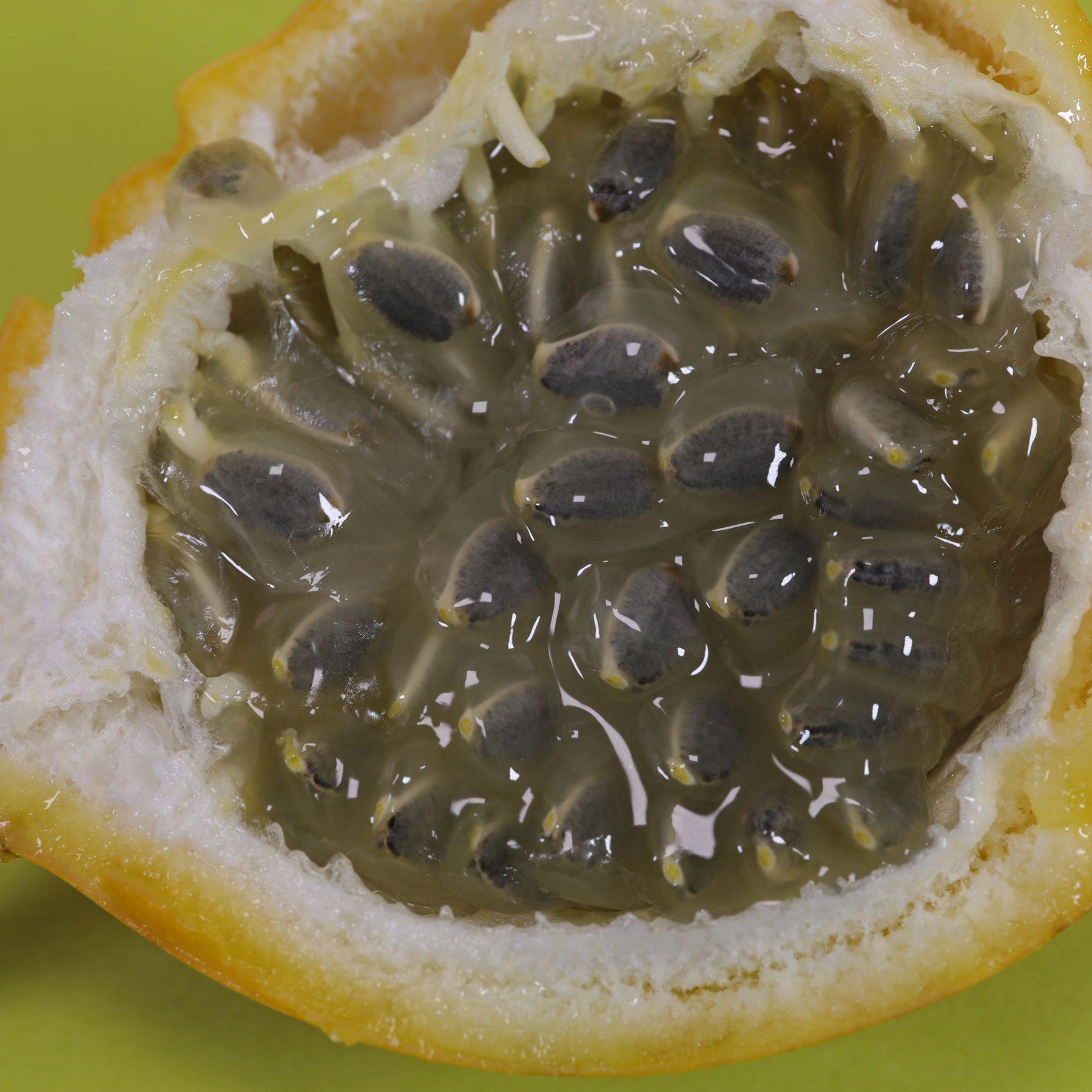 Granadilla seeds