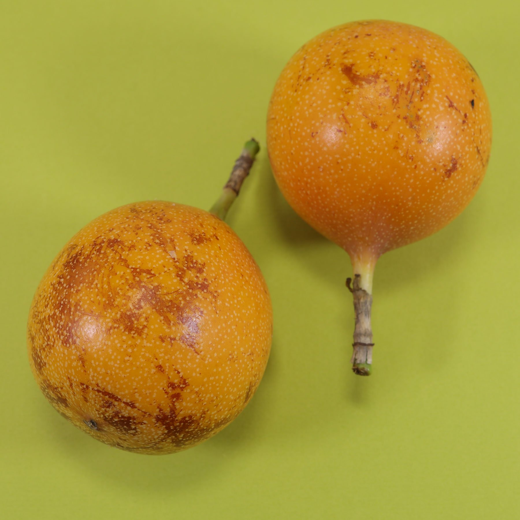 Sweet Passion Fruits